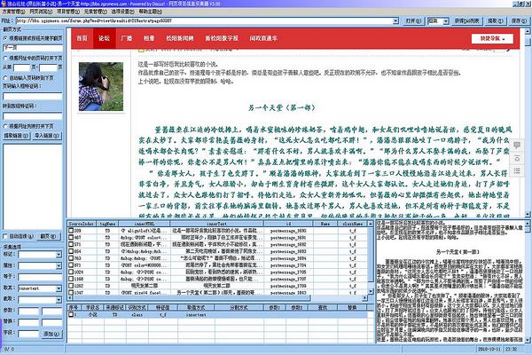 网页项目信息采集器截图2