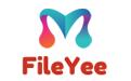FileYEE数据备份恢复软件段首LOGO