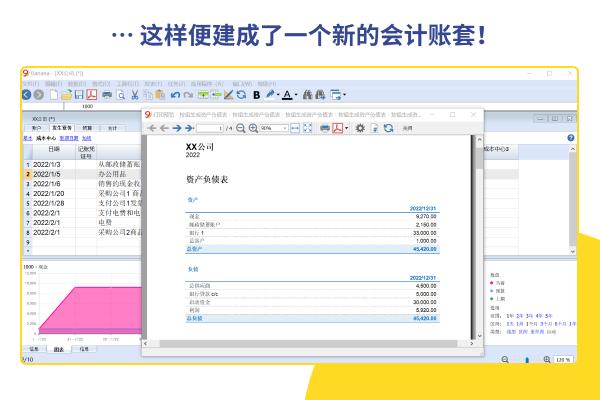 Banana财务会计软件 Mac截图4