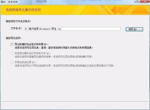 Microsoft Access 2007截图