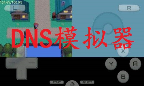 NDS模拟器截图
