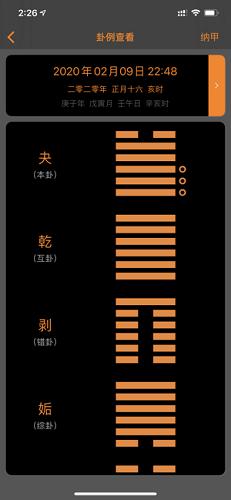 梅花易数专业版截图5