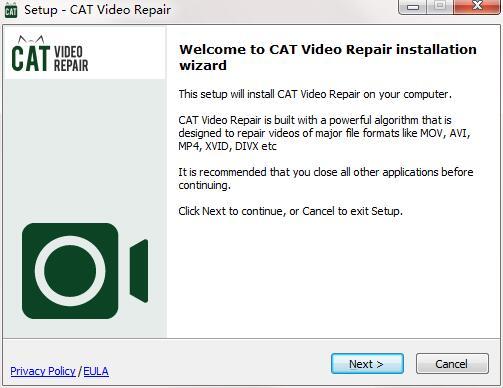 CAT Video Repair截图