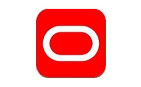 oracle10g客户端精简绿色版段首LOGO