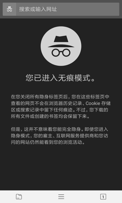 宙斯浏览器截图