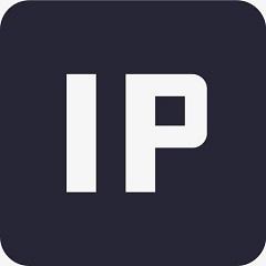 本机IP地址查询器