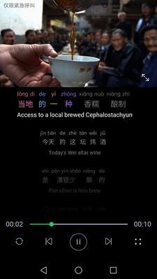微汉语二外截图