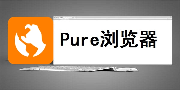 Pure浏览器截图