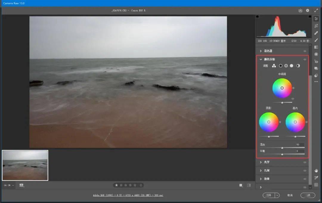 Adobe Camera Raw2021截图
