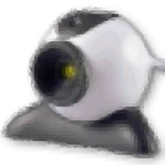 虚拟摄像头