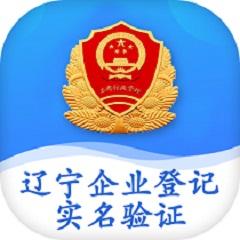 辽宁工商全程电子化平台