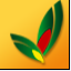 派工单管理售后管理系统国产在线精品亚洲综合网