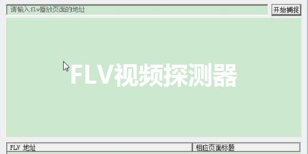 FLV视频探测器截图