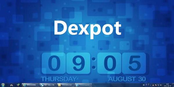 Dexpot截图