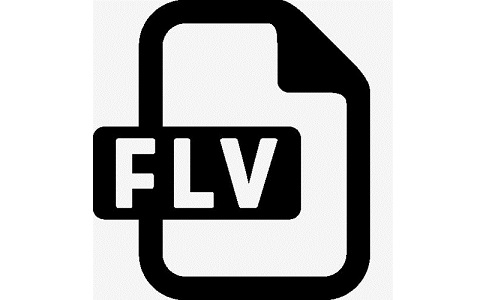 FLV视频播放器段首LOGO