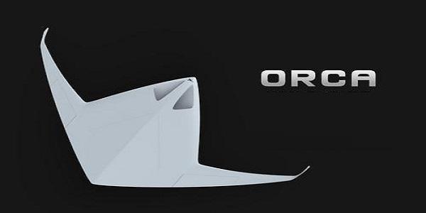 Orca截图