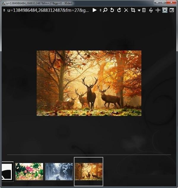 Xlideit Image Viewer截图