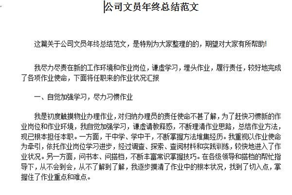 公司年终总结报告范文截图
