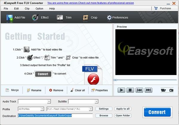 4Easysoft Free FLV Converter截图1