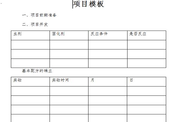 项目模板截图1