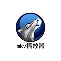 MKV播放器