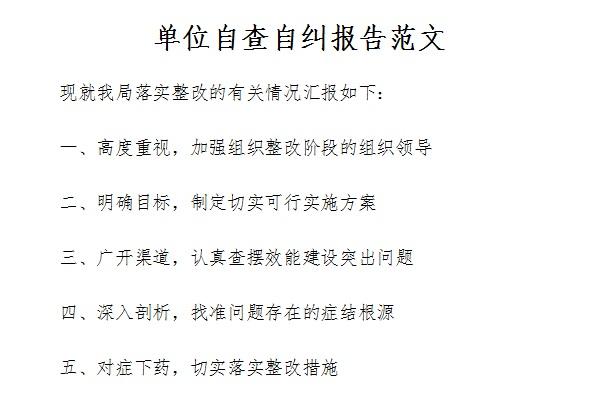 单位自查自纠报告范文截图