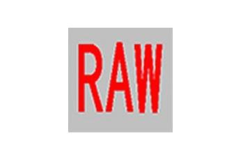 RAW Tools(raw修复工具)段首LOGO