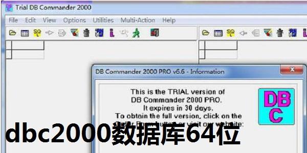 dbc2000数据库64位截图