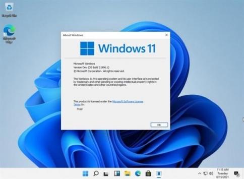 windows11电脑模拟器截图