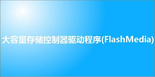 大容量存储控制器驱动程序(FlashMedia)截图