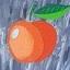Apricot DB