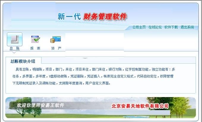 安易王财务软件截图