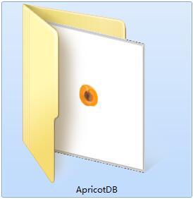 Apricot DB截图
