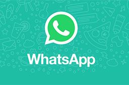 WhatsApp段首LOGO