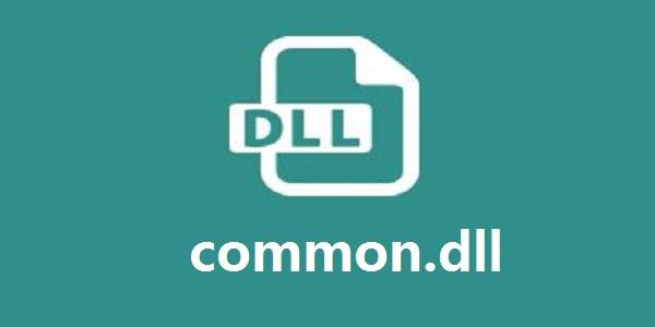 common.dll截图
