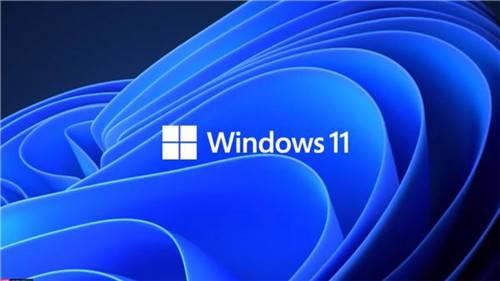Win11系统微软官方体验版截图
