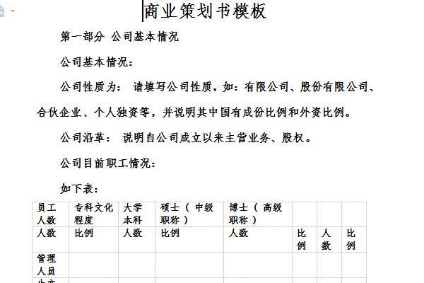 方案策划书模板截图
